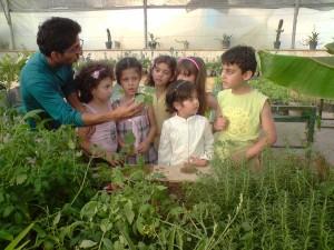 آموزش خصوصی باغبانی